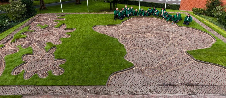 Parque Keukenhof homenageia Van Gogh